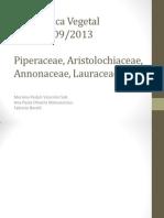 1 - Piperaceae, Aristolochiaceae, Annonaceae, Lauraceae.pptx