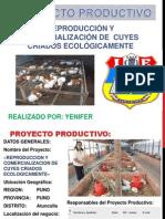 Diapositivas Yennifer
