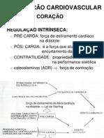 Cardiovascular Regulacao