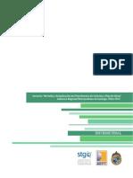 Revisión y Actualización del Plan Maestro de Ciclovías y Plan de Obras - Ciclovías Stgo. 2032