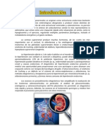 Quizlet paredes capilares fisiopatología consisten en
