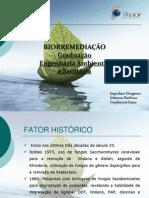 biorremediao-110217063252-phpapp02 (1)