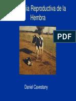 Clase 2 Fisiologia Reproductiva de La Hembra