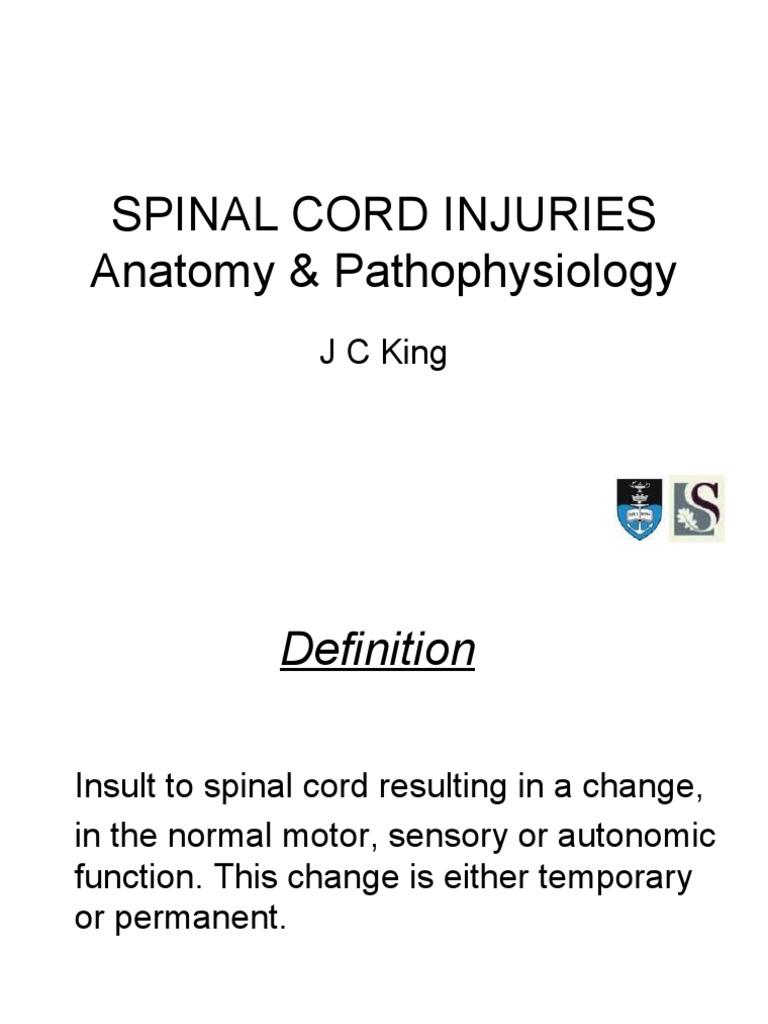 Spinal Cord Injuries | Spinal Cord | Spinal Cord Injury