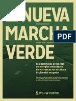 La Nueva Marcha Verde (2013)
