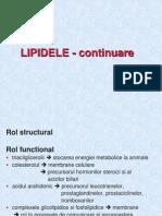 Lipide Si Membrana Partea2