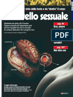 Sesso e cervello (FOCUS)