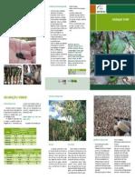 Folder Adubação Verde