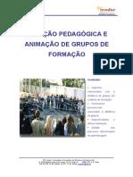 Relacao Pedagogica e Animacao de Grupos de Formacao