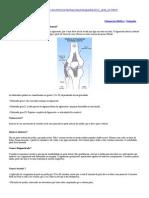 JOELHO Distensão do Ligamento Colateral Lateral