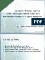 estudios en la producción de acetato de isoamilo