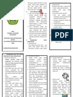 5. Leaflet Menopause
