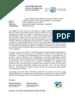 stage_Master_MIPS_2013_avion_au_sol (1).pdf