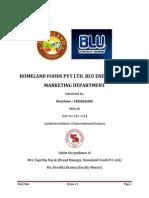 Divij Patel Internship Report 12020241045