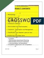 Final Report of Crossword