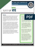 Rye fiscal profile