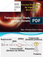 Transcripcion - Traduccion y Codigo Genetico