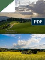 Germany , Schwarzwald - ARI