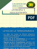 entropía y neguentropía.pdf