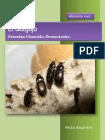 Manual Del Cultivo de Gorgojos