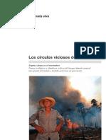 WWF 2007 Los círculos viciosos de la amazonía