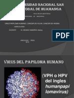 Ginecologia - VPH - Copia