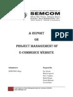 Project Management Process report for Website Developement