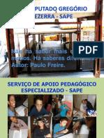 Projeto - SAPE 2013 Atualizado (1)