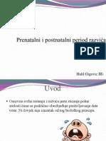 Prenatalni i postnatalni period razvića