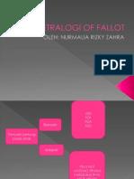 Tetralogi of Fallot Redehhh
