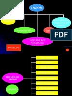 Enzyme Summary form 4