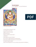 Patrul Rinpoche MOLLA TUTTO, STA Lì IL SEGRETO