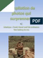 Compilation de Photos Qui Surprennent