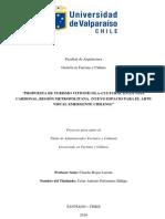 Propuesta Turismo Vitivinícola-Cultural en la Viña Cardonal. (Nuevo espacio para el Arte Visual Emergente Chileno)