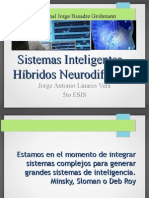 IA 2013 Sistemas Inteligentes Hibridos Neuro