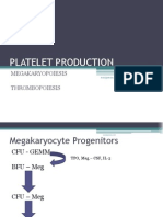 Platelet Production