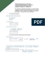 Desarrollo Guia Pto EQ 118001
