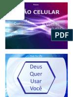 Visao Celular