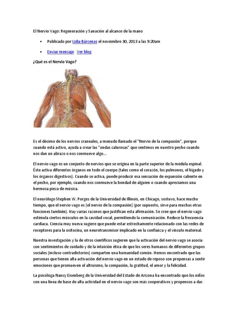 Lujoso Qué Significa Propensa En La Anatomía Motivo - Imágenes de ...