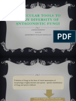 Molecular Tools to Study Diversity of Antagonistic Fungi