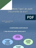 auditul calitatii
