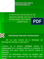 Strategia Nationala de Reintegrare Sociala a Persoanelor Private de Libertate