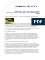Combaterea Gandacului de Colorado Prin Metode Bio