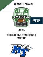 2010 MESH