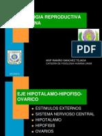 h Fis. Reproductiva Fem. 6