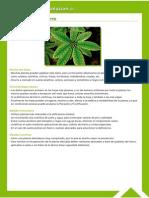 Guía Fitosanitaria33.pdf
