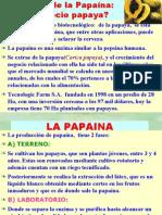 PAPAINA_Negocio