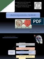 autorregulaciòn crebral