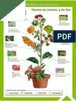 Guía Fitosanitaria5.pdf