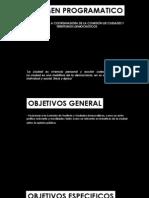 Resumen Programatico CTYC
